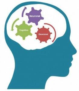Analisis Neurofuncional img