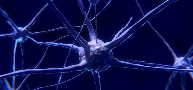 Neurofeedback Testimonios
