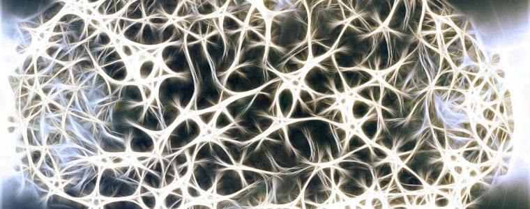 Neurofeedback: ¿en qué consiste y cúal es su efectividad en pacientes con TDAH? 1